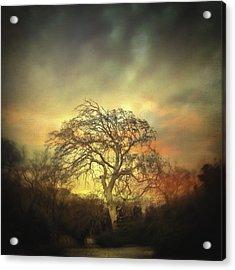 Un Dernier Crepuscule Acrylic Print