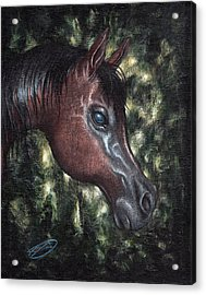 Acrylic Print featuring the painting Unbridled by Joe Burgess