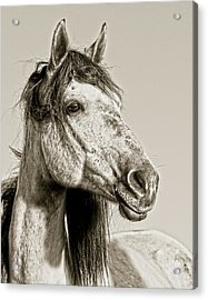 Unbroken Acrylic Print by Ron  McGinnis