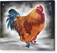 Uncle Samie's Rooster Acrylic Print by Ilse Kleyn