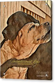 Acrylic Print featuring the digital art Unconditional Love by Kathy Tarochione