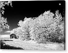 Acrylic Print featuring the photograph Under A Dark Sky by Dan Jurak