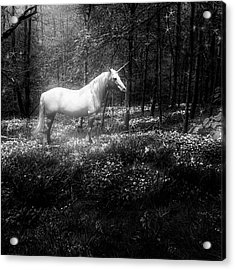 Under A Moonlit Sky  #fantasy #unicorn Acrylic Print