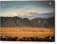 Under  Big Skies Of Montana Acrylic Print by Doug van Kampen, van Kampen Photography