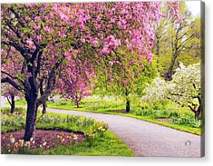 Under The Apple Tree Acrylic Print by Jessica Jenney