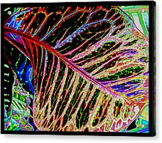 Acrylic Print featuring the photograph Under The Croton Leaf by Kate Word