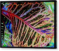 Under The Croton Leaf Acrylic Print