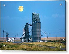 Under The Harvest Moon Acrylic Print by Todd Klassy