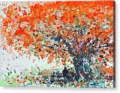 Under The Shade Of The Flamboyant Acrylic Print by Zaira Dzhaubaeva