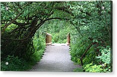 Under The Tunnel Acrylic Print by Rod Jellison