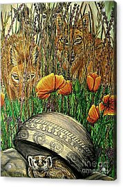 Undercover Acrylic Print by Kim Jones
