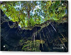 Acrylic Print featuring the photograph Underground by DJ Florek