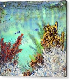 Underwater #2 Acrylic Print