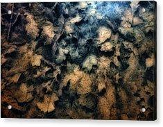 Underwater Leaves Acrylic Print
