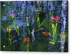 Underwater Lilies Acrylic Print