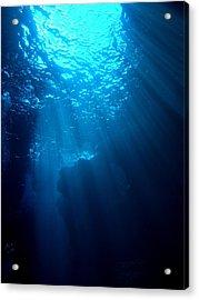 Underwater Sunlight Acrylic Print by Takau99