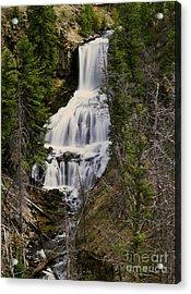 Undine Falls On Lava Creek Acrylic Print by Dennis Hammer