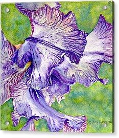 Unfolding-iris Acrylic Print by Nancy Newman