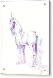 Unicorn Acrylic Print by Christine Winters
