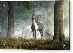 Unicorn Acrylic Print by Daniel Eskridge