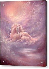 Unicorn Mare And Foal Acrylic Print by Jack Shalatain