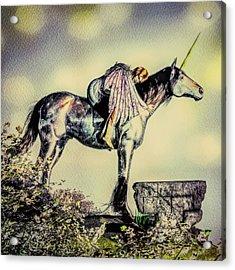 Unicorn Sunset Acrylic Print