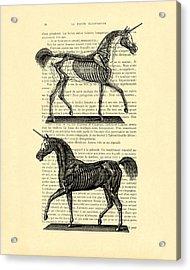 Unicorns Anatomy Acrylic Print by Madame Memento