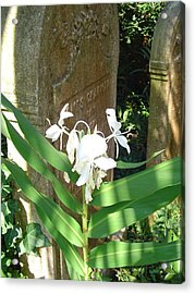 Unitarian Church Cemetery Acrylic Print by Richard Marcus