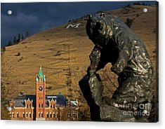 University Of Montana Icons Acrylic Print by Katie LaSalle-Lowery