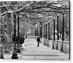 University Walk Acrylic Print
