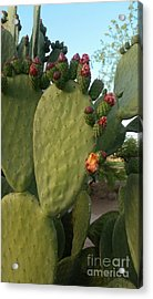 Unprickly Prickly Pear Vertical Acrylic Print