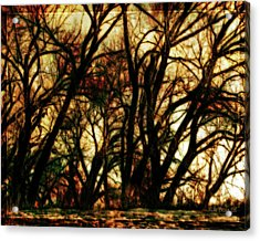 Unquenched Thirst Acrylic Print