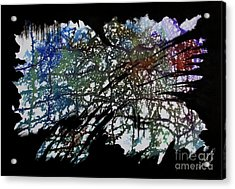 Untitled-77 Acrylic Print
