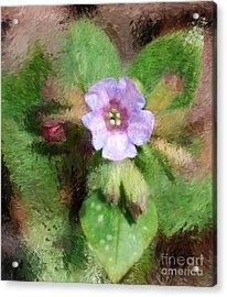 Untitled Floral -1 Acrylic Print by David Lane