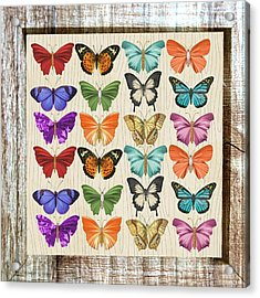 Colourful Butterflies Collage Acrylic Print