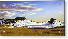Acrylic Print featuring the painting Unwalked by Rick McKinney