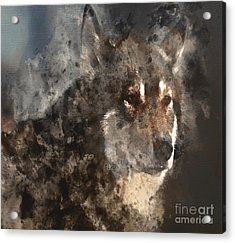 Unwavering Loyalty Acrylic Print