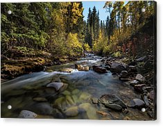 Up A Colorado Creek Acrylic Print