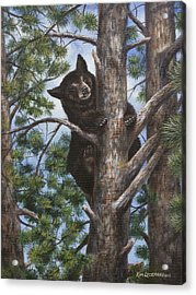 Acrylic Print featuring the painting Up A Tree by Kim Lockman