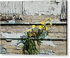 Acrylic Print featuring the digital art Up Against The Wall by Ellen Barron O'Reilly
