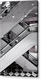 Up And Down Acrylic Print