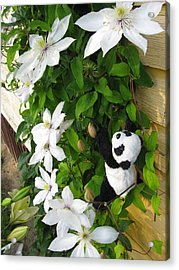 Acrylic Print featuring the photograph Up And Up And Up by Ausra Huntington nee Paulauskaite