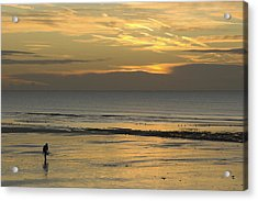 Up At First Light Acrylic Print by Hazy Apple