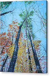Acrylic Print featuring the painting Up Into The Trees by Mike Ivey