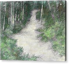 Up Into The Woods Colorized Acrylic Print by David King