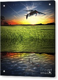Up Side Dawn Acrylic Print