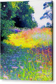 Uphill In The Meadow Acrylic Print by Shirley Moravec