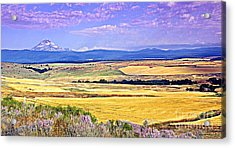 Upon Golden Fields Acrylic Print