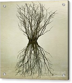 Acrylic Print featuring the photograph Upon Reflection IIi  by Terry Rowe