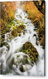 Upper Cascades At Cascade Springs Acrylic Print
